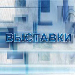 Выставки Быково